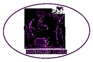 anidox_logo